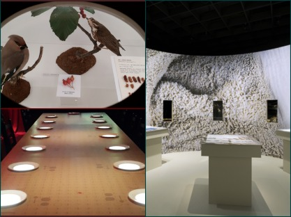 Collage_Fotor_museum2